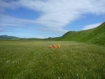 Studying Alaska Geology Royalty Free Stock Photo