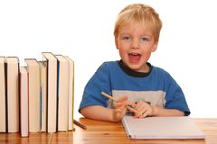 Studying boy Stock Images