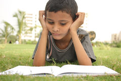 Studying. Boy reading book in the garden Royalty Free Stock Image