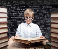 Studying boy Stock Image