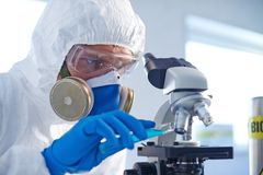 Studying chemical substance Royalty Free Stock Images