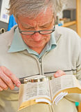 Studying a dictionary. royalty free stock photo