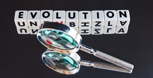 Studying evolution. Text ' evolution ' in black upper case letters on small white cubes with hand magnifier on black Stock Images