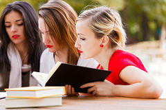 Studying for Final Examination Stock Image