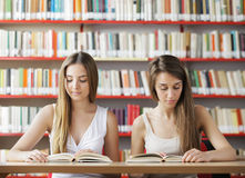 Studying in the library Royalty Free Stock Images