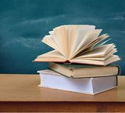 Studying literature Stock Images
