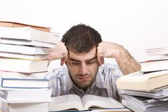 Studying man Stock Photography