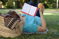 Studying outdoors. Red-haired girl laying  with book and apple in park Stock Photos
