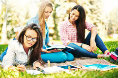Studying outdoors Royalty Free Stock Photo