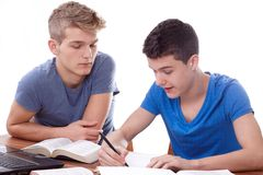 Studying together Royalty Free Stock Image