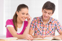 Studying together. Stock Images