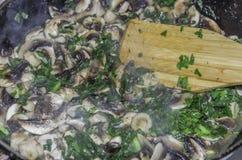 Stufato dei funghi con il primo piano delle verdure Immagine Stock