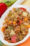 Stufato della lenticchia con la verdura Fotografia Stock Libera da Diritti