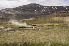 Stufato di castrato di Haukadalslaug/area geotermica di Haukadalur Fotografie Stock Libere da Diritti