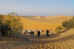 Stufe in einem Lager der Wüste. Stockbild