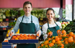 Stuff in apron selling sweet oranges, lemons and tangerines Royalty Free Stock Images