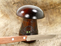 Stuff mushroom Royalty Free Stock Image