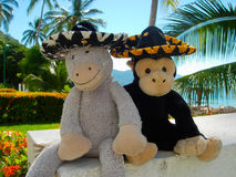 Plush Toys in Sombrero Hat Stock Images