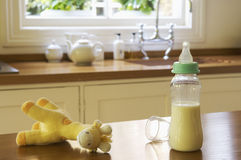 Stuffed Animal And Baby Bottle On Kitchen Counter Stock Images