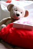 Stuffed animal. Stuffed bear and a little gift waiting for its little owner at a party in the Netherlands Royalty Free Stock Photos