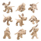 Stuffed animal dog Royalty Free Stock Image