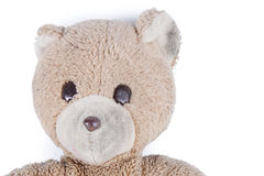 Stuffed Animal Stock Photography