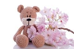 Stuffed animal teddy bear with pink blossom Stock Photo