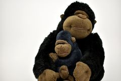Mom and baby stuffed toy gorilla on a white background.. stock photos