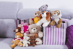 Stuffed animal toys in interior room Royalty Free Stock Photo