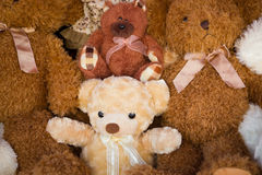 Stuffed Animals Royalty Free Stock Photography