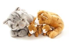 Stuffed animals cat family Stock Photography