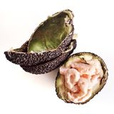 Stuffed avocado Stock Image