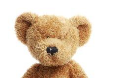Stuffed bear Stock Image