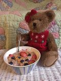A Stuffed Bear having Cereal Royalty Free Stock Image