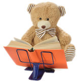 Stuffed bear reading a book. Image of a stuffed bear reading a book isolated on white Royalty Free Stock Image