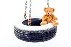Stuffed Bear on Tire Swing Stock Photography