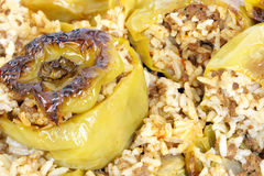 Stuffed bell peppers Stock Images