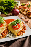 Stuffed Bolognese pancakes with minced meat and vegetable with tomato sauce Stock Images