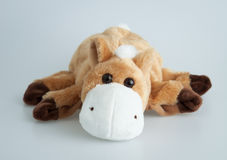 Stuffed brown horse Stock Image