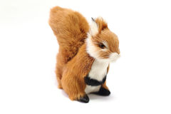 Stuffed brown squirrel. White background Stock Photos