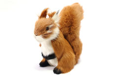 Stuffed brown squirrel. White background Royalty Free Stock Photography