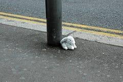 Stuffed Bunny Toy Left on London Street. Disregarded Stuffed Bunny Toy Left Behind on a Street in London, England Stock Photo
