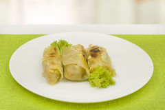 Stuffed cabbage leaves Royalty Free Stock Photo