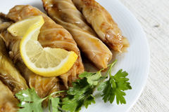 Stuffed cabbage leaves Royalty Free Stock Images