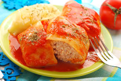 Stuffed cabbage leaves with mince and rice Stock Image