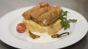 Stuffed cabbage leaves with polenta Stock Photography