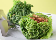 Stuffed cabbage with meat Royalty Free Stock Photo