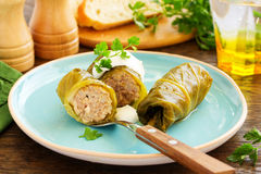 Stuffed cabbage with meat Royalty Free Stock Photos