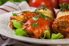 Stuffed cabbage with meat and rice served with boiled potatoes and tomato sauce Stock Photography
