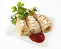 Stuffed cabbage on a plate Royalty Free Stock Photos